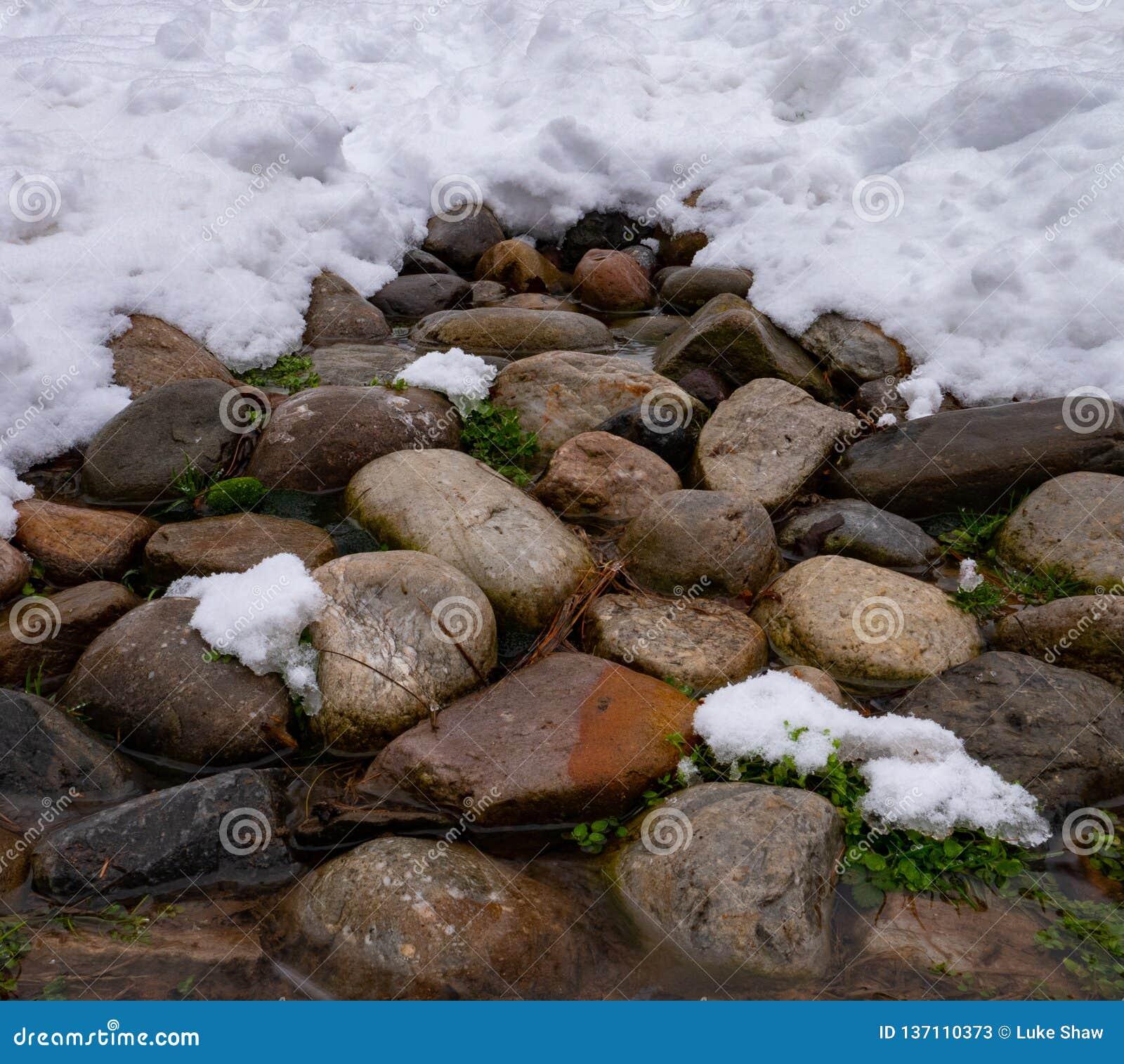 Rocky Winter