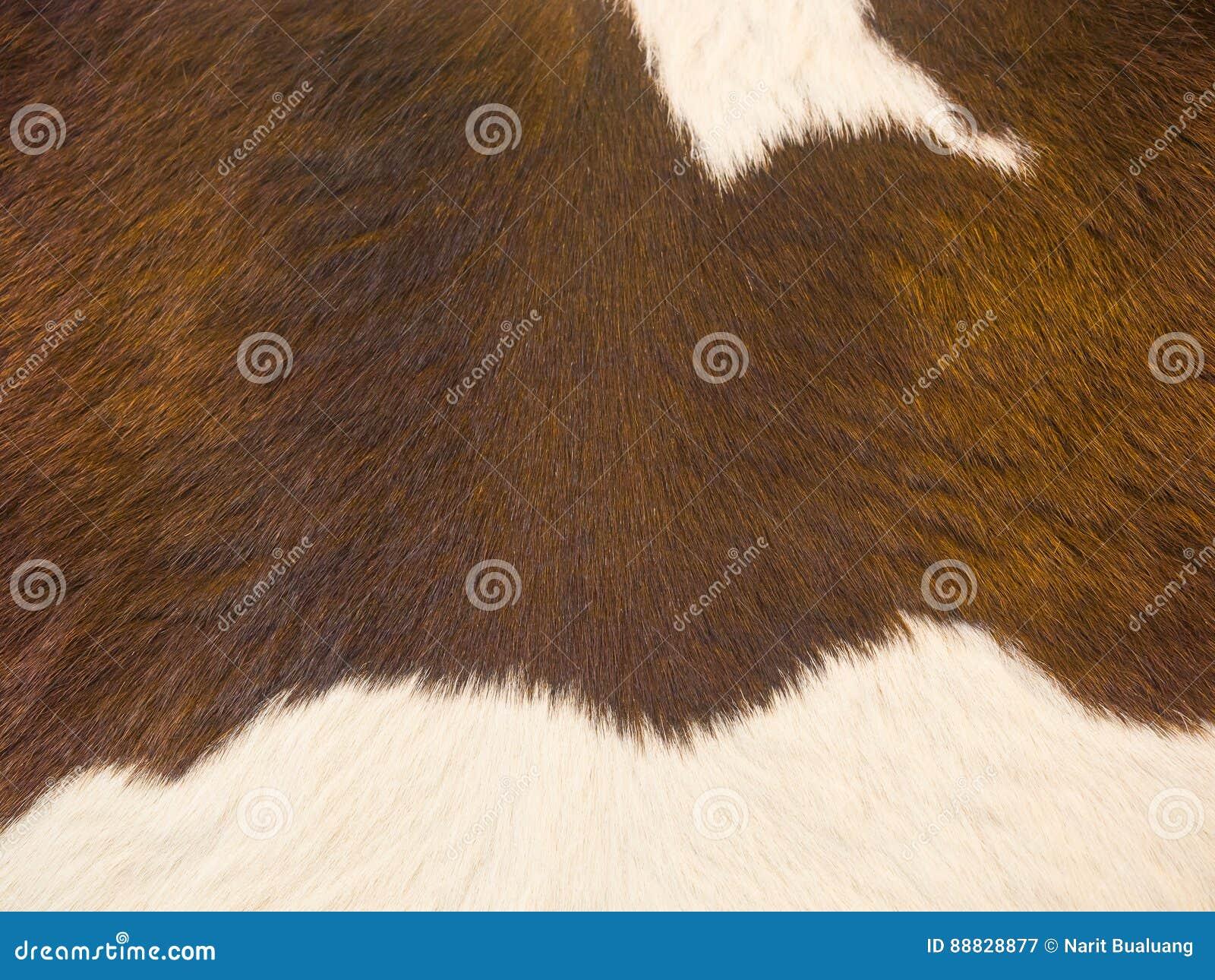 Rocznik skóry skóra
