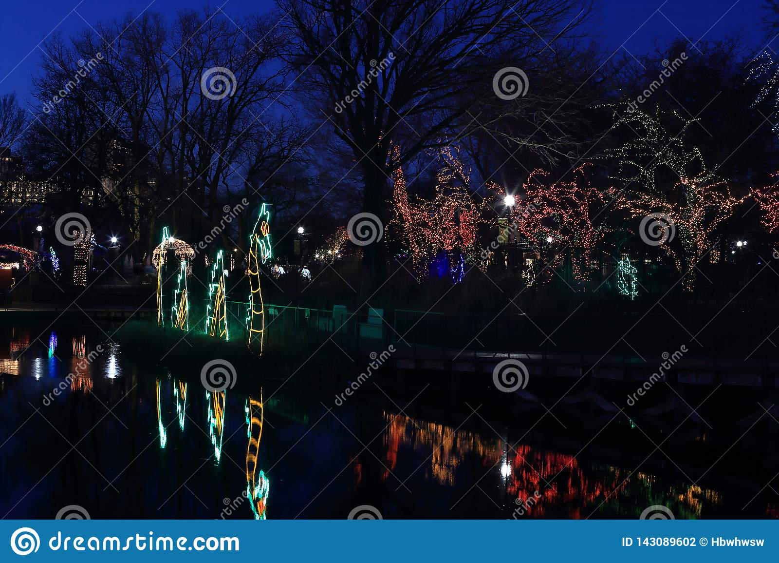 Rocznika światła przedstawienie w Lincoln parku, Chicago