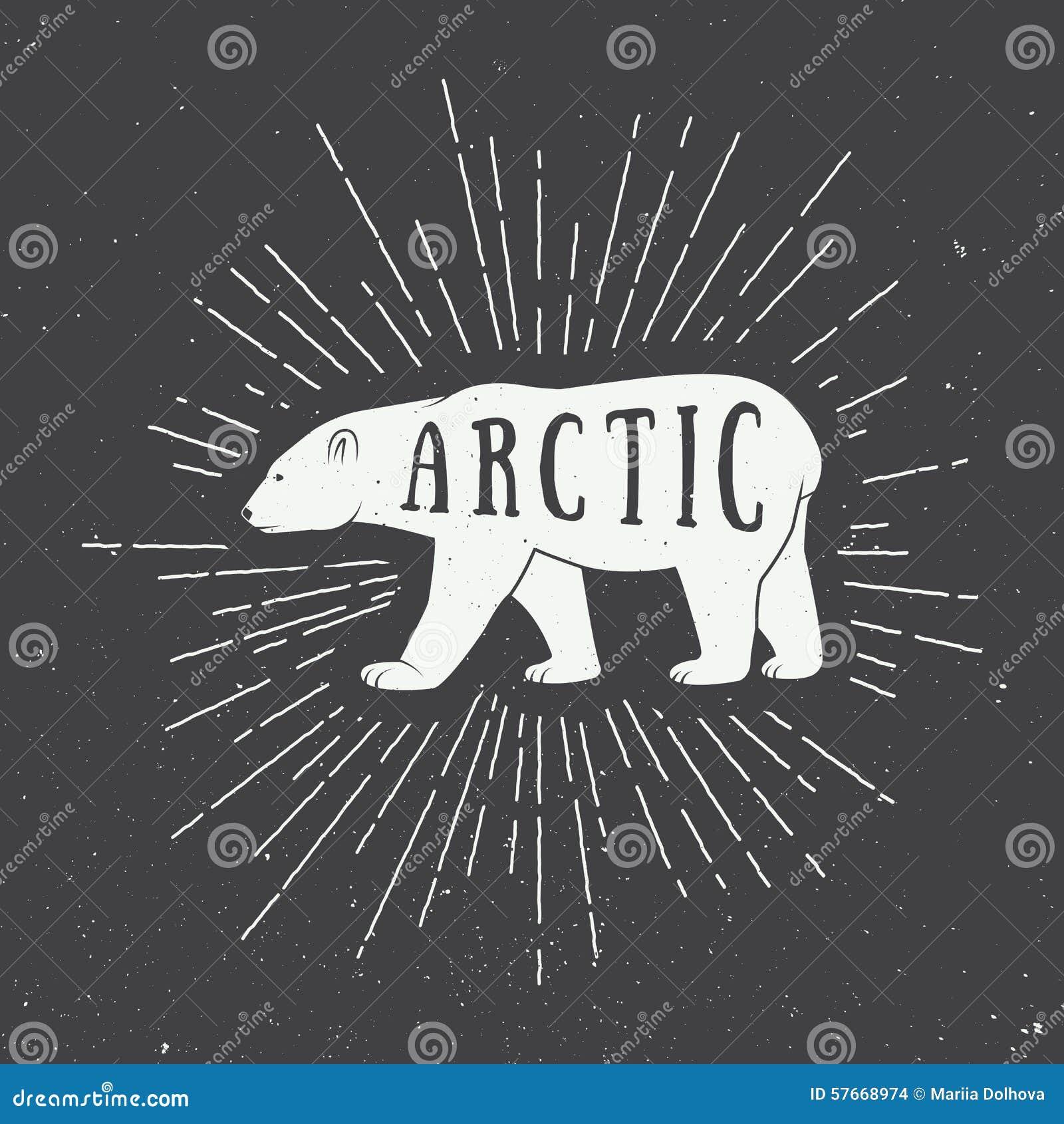 Rocznika arktyczny biały niedźwiedź z sloganem