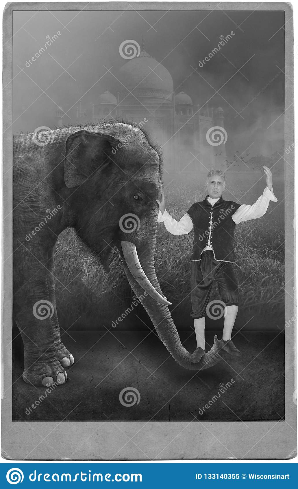 Rocznika Cyrkowy wykonawca, karnawał, słoń