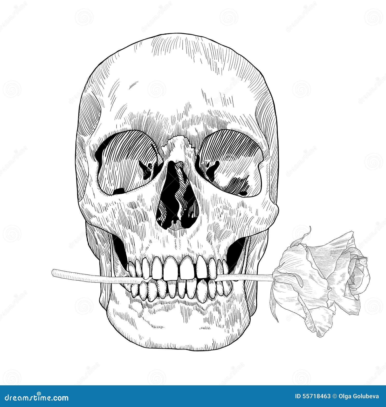Rocznika kartka z pozdrowieniami z ręka Rysującą czaszką i