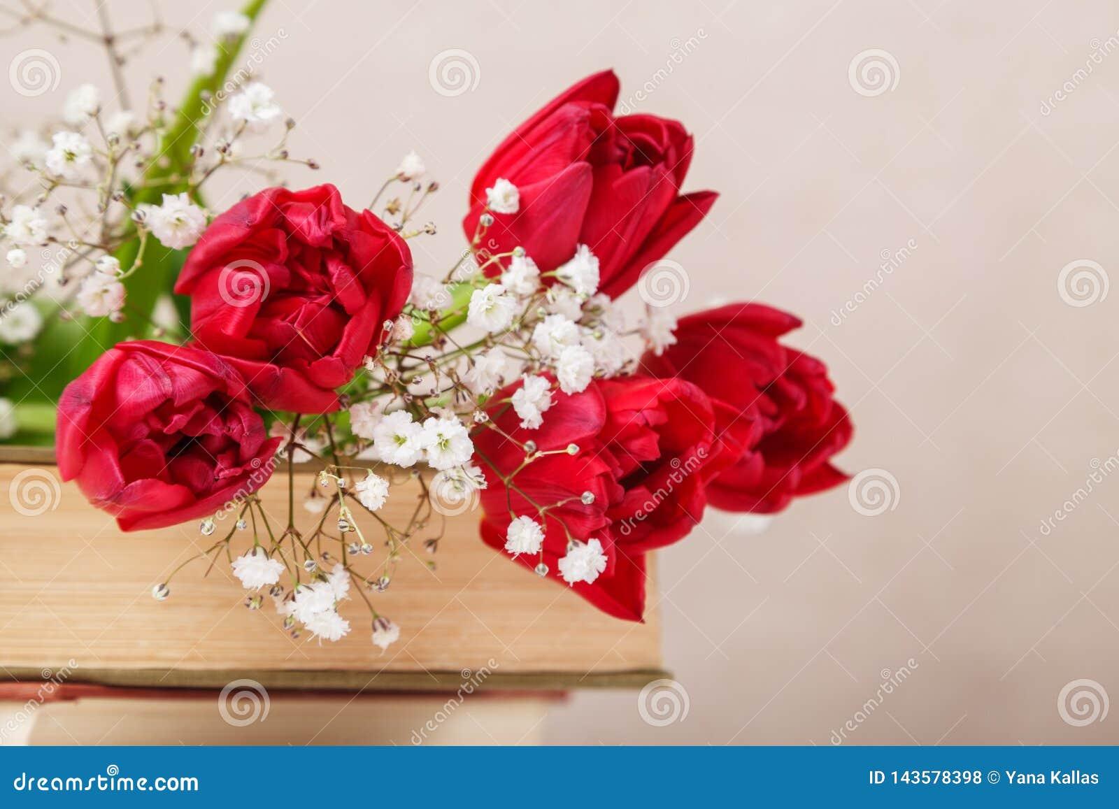Rocznika wciąż życie z wiosny czerwonymi tulipanami i książki na beżowym tle Matka dzień, kobieta dnia pojęcie
