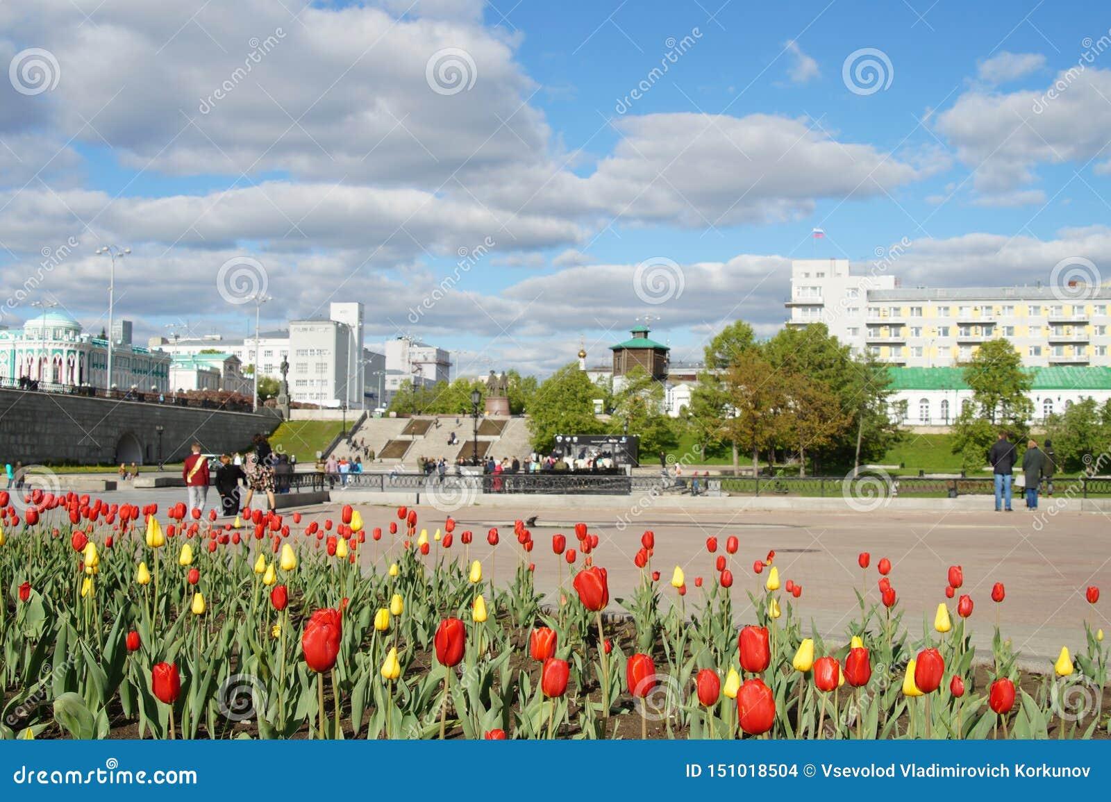 Rode en gele tulpen op de achtergrond van cityscape met wolken