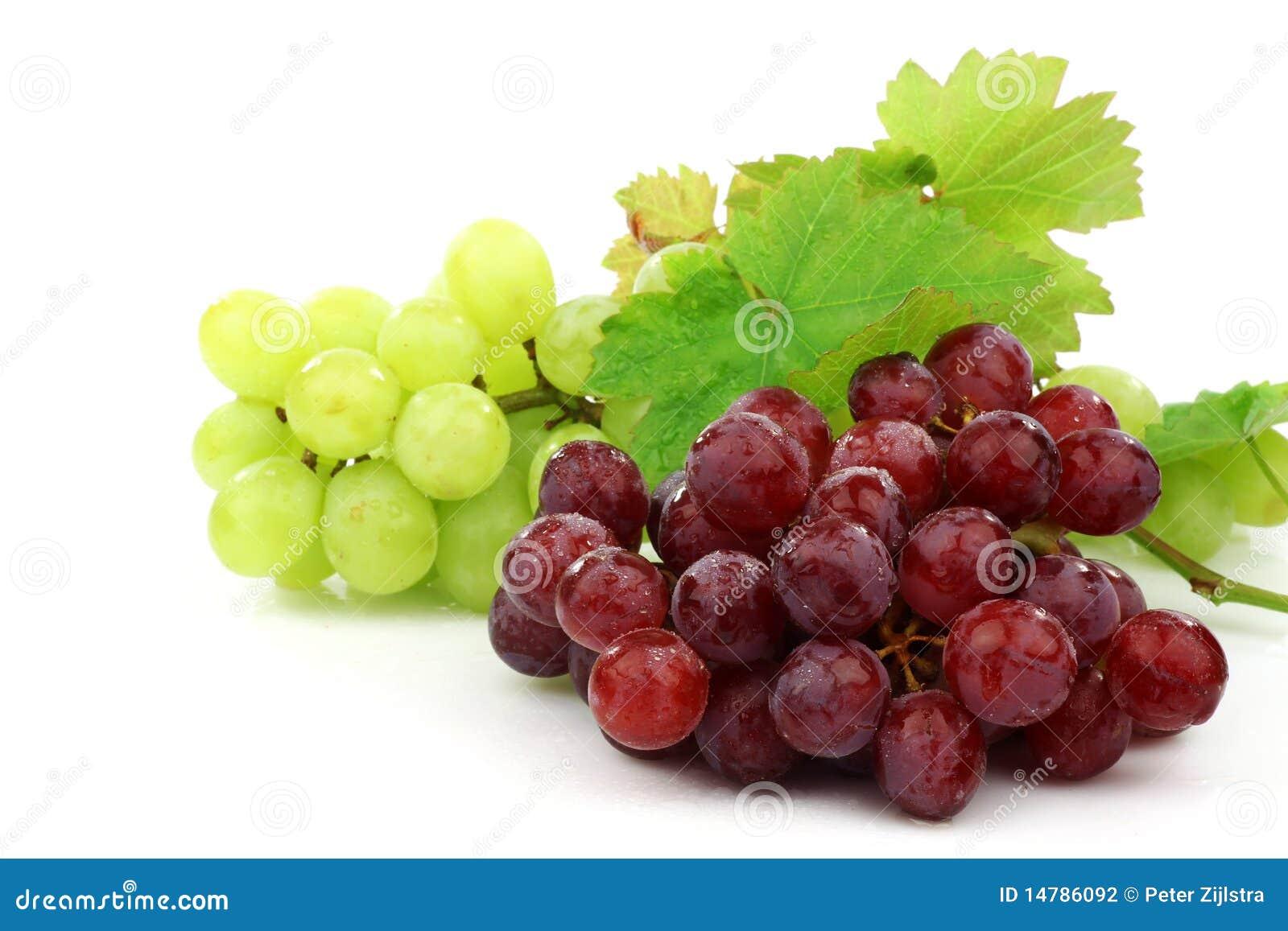 Rode en witte druiven stock fotografie beeld 14786092 - Witte meubels en rode ...