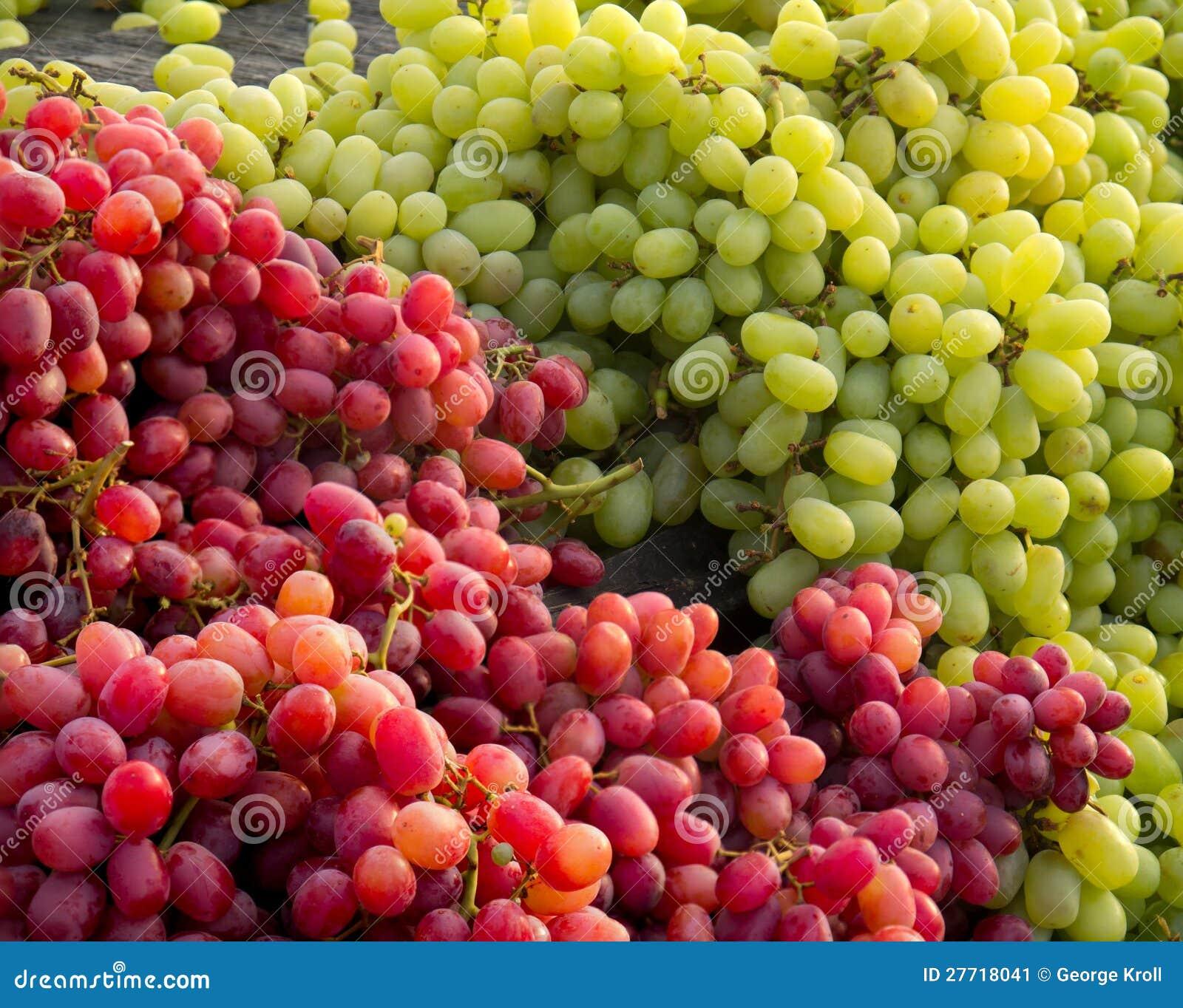 Rode en witte druiven stock afbeelding afbeelding 27718041 - Witte meubels en rode ...