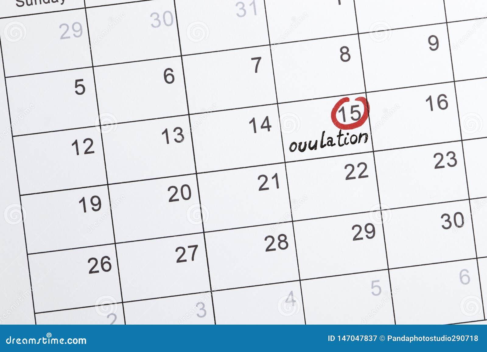Rode highlighter met het teken van de ovulatiedag op kalender