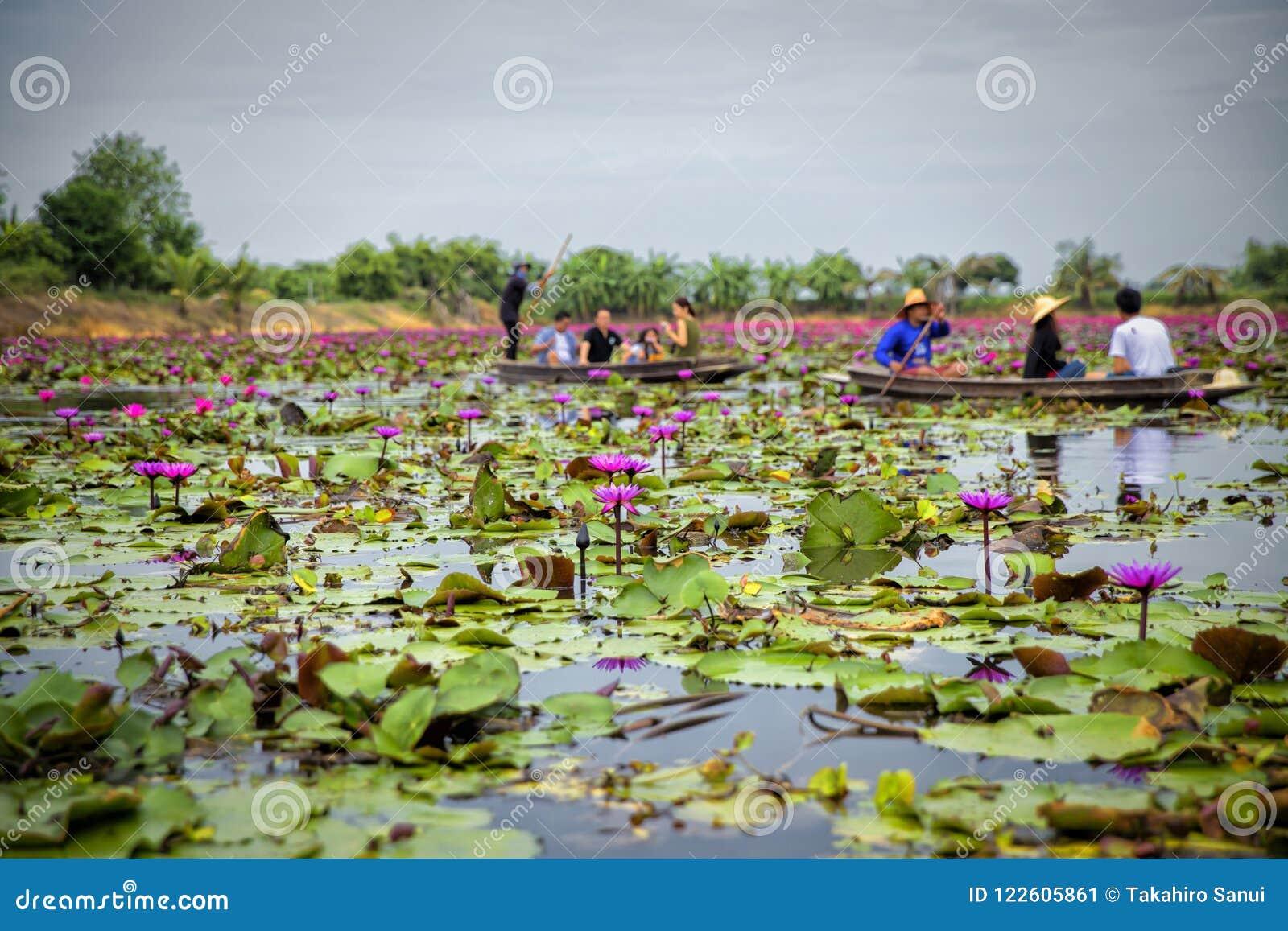 Rode Lotus Floating Market in Thailand