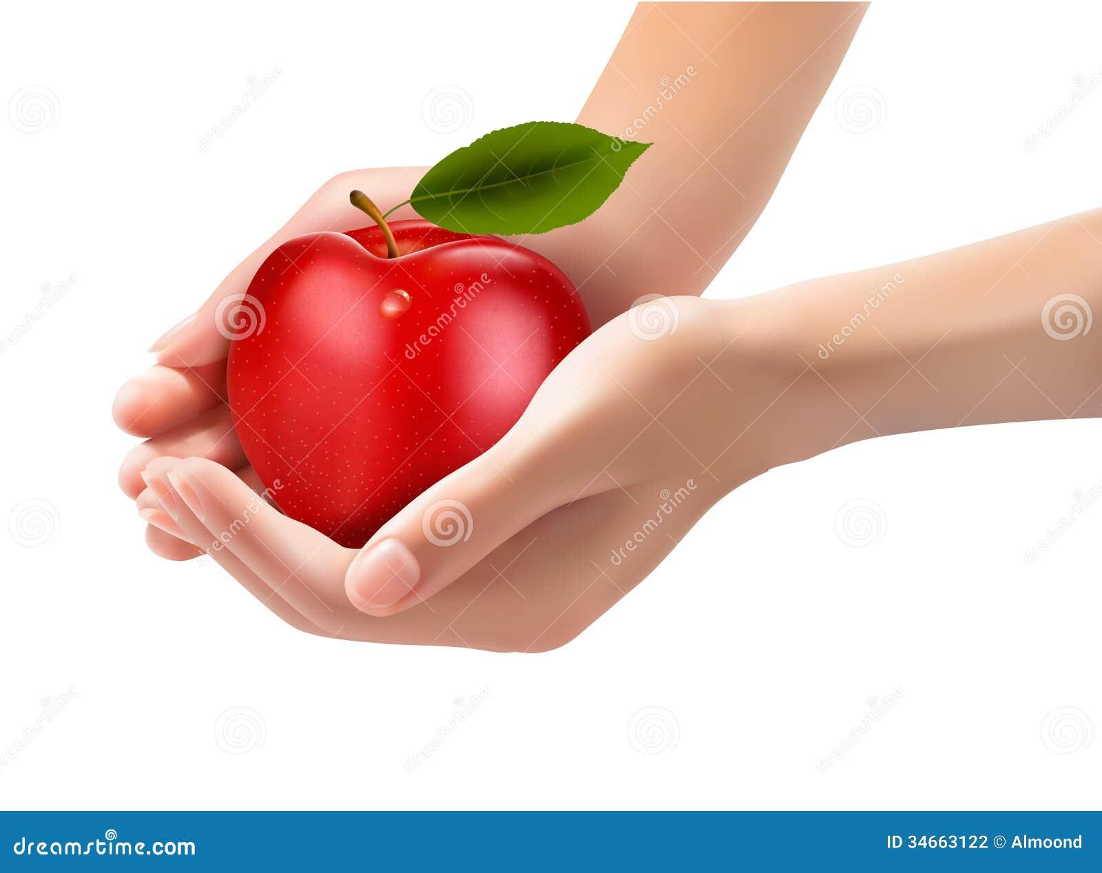 Rode rijpe appel in handen. Concept dieet.