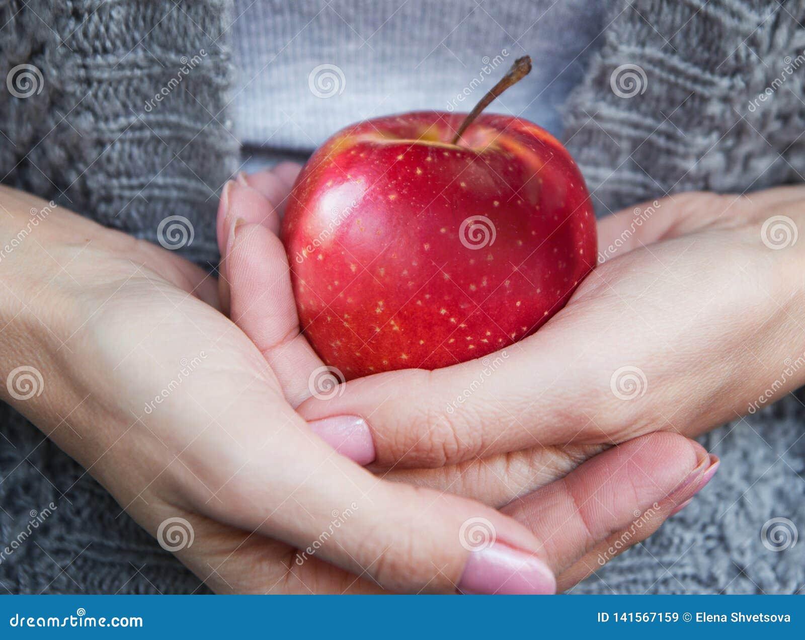 Rode rijpe sappige appel in vrouwelijke handen