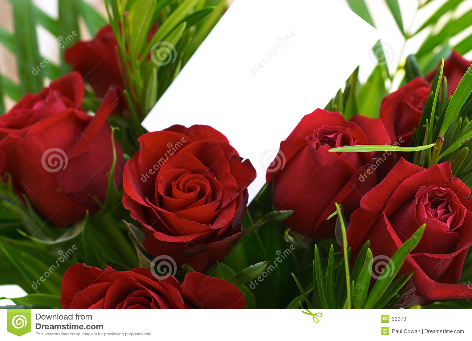 Rode rozen 3