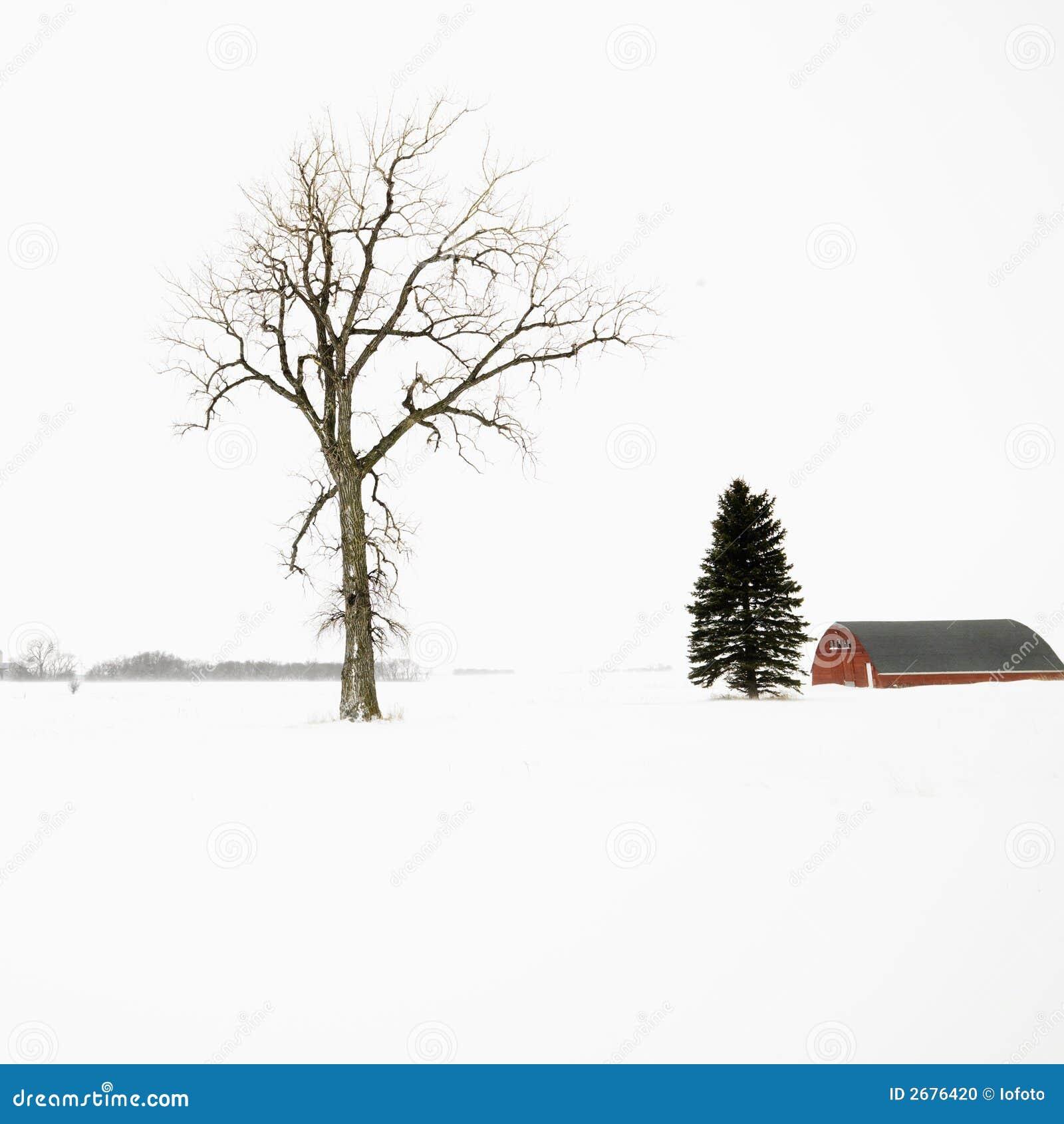 Rode schuur in de winter.