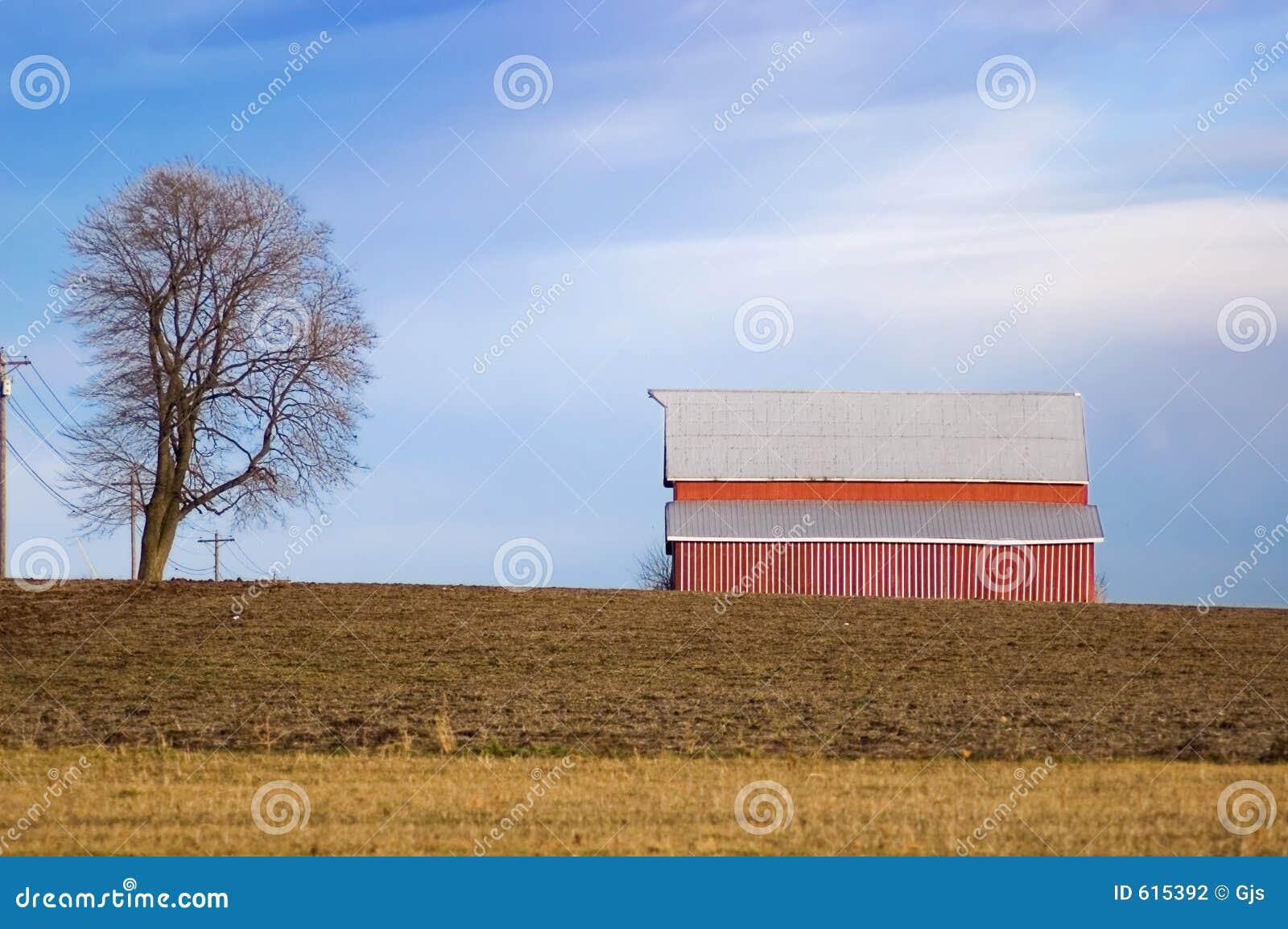 Rode Schuur en Boom op de Landbouwgrond van de Winter
