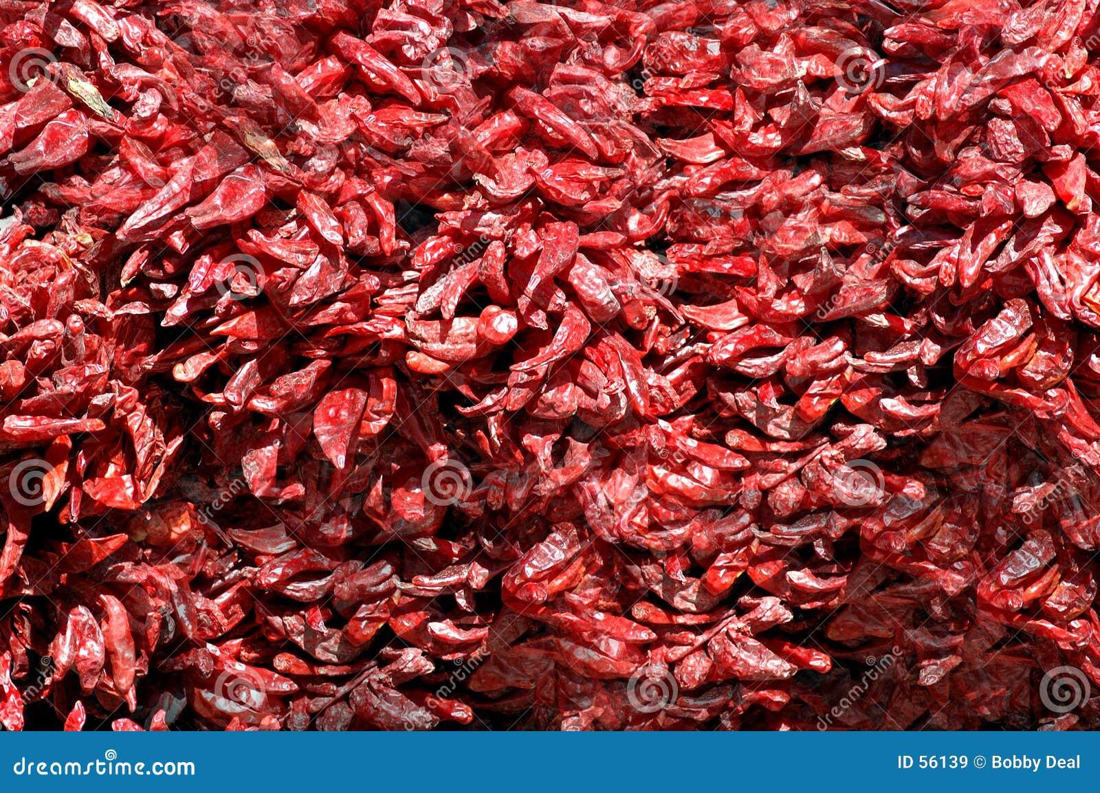 Rode Spaanse peper Ristras