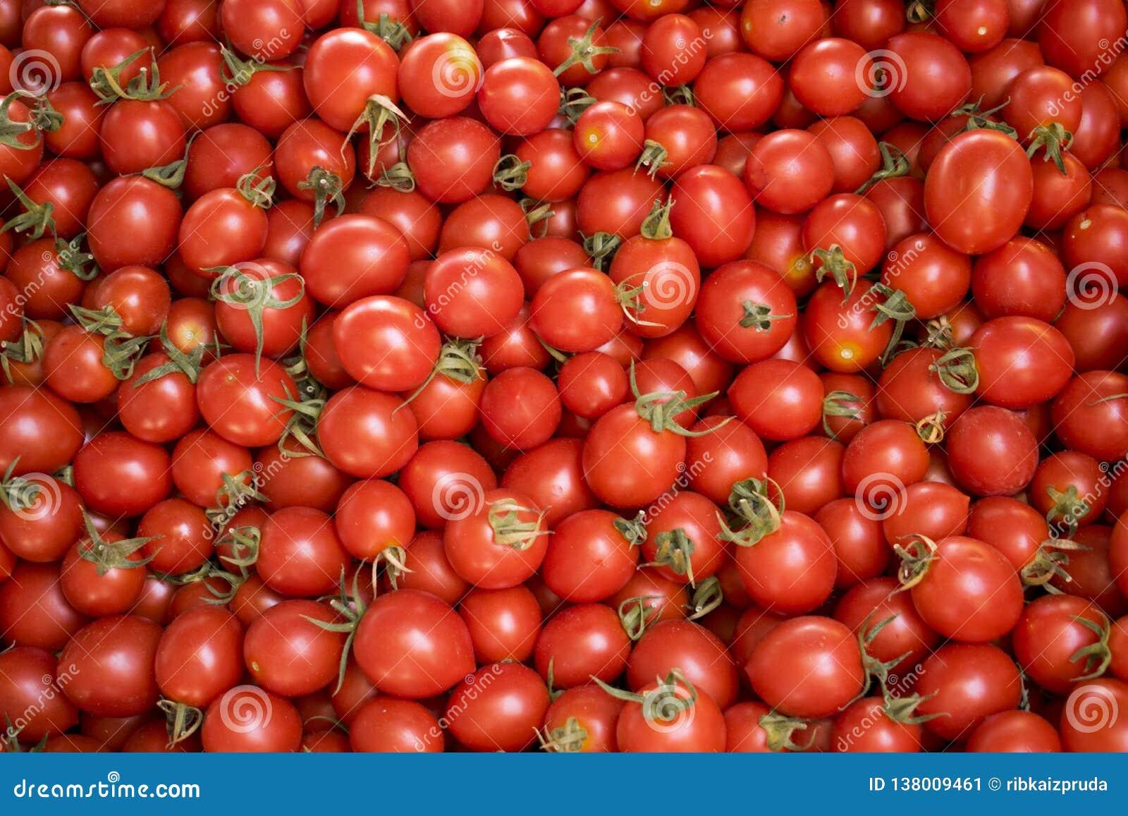 Rode tomaten bij een landbouwersmarkt
