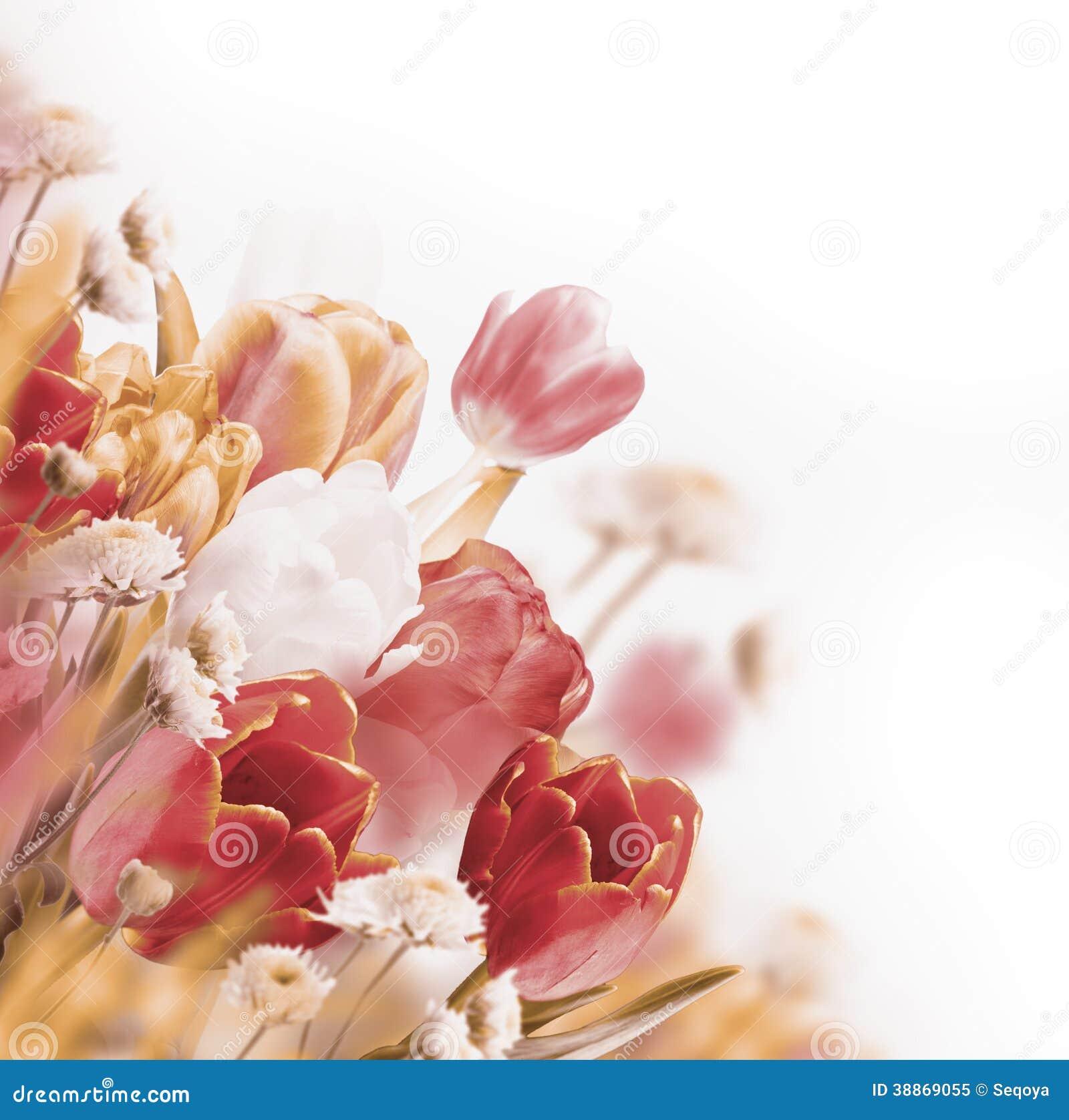 Rode tulpen met groen