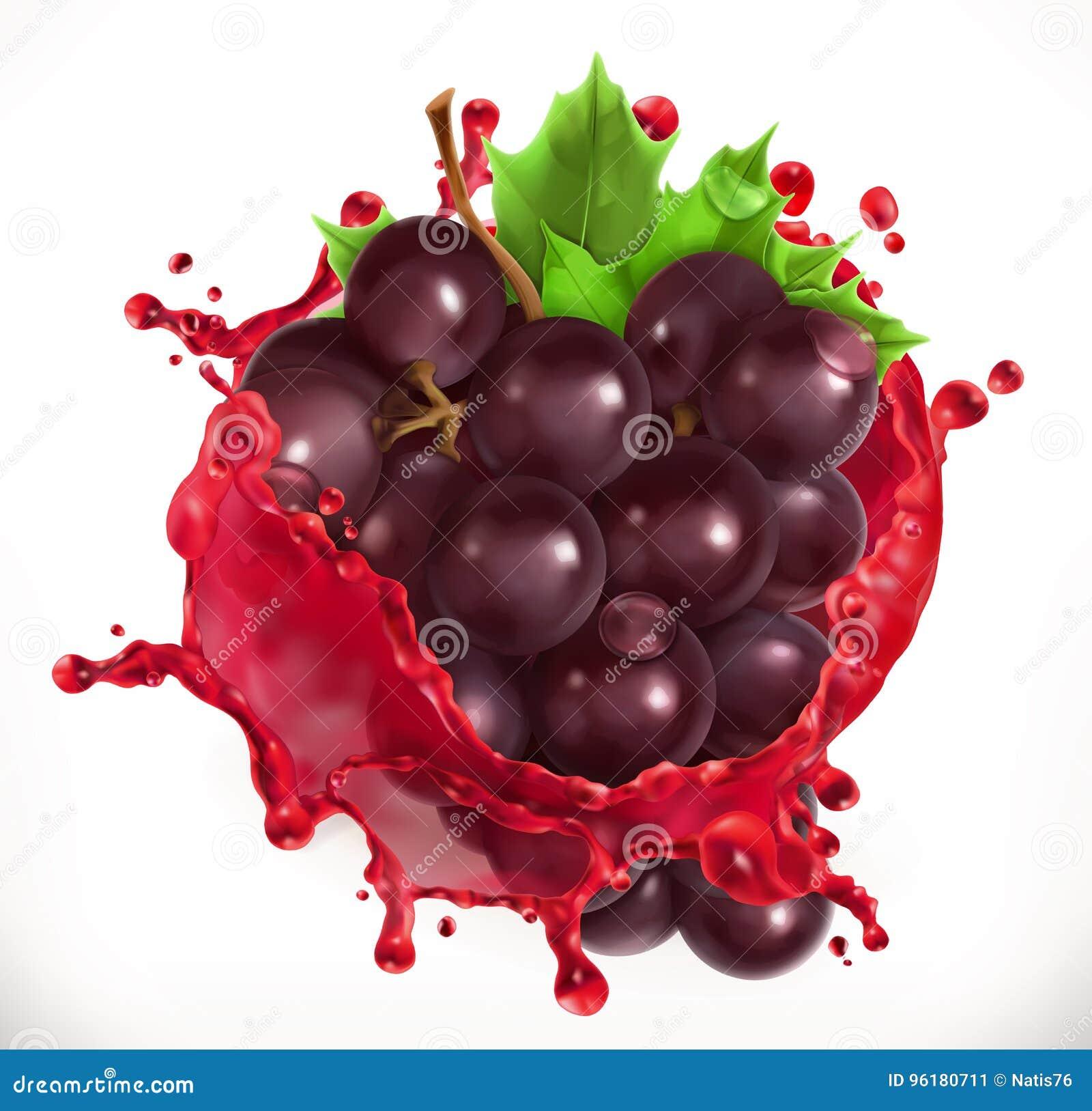 Rode wijn en druiven Vers fruit, vectorpictogram