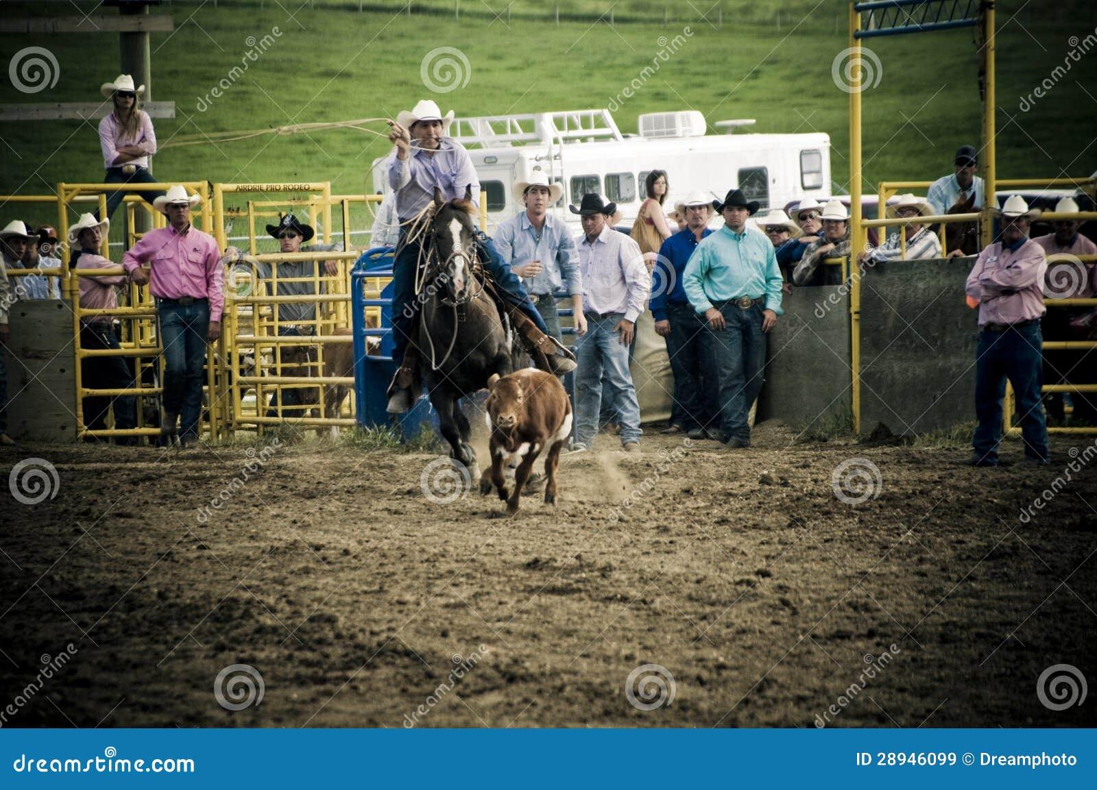 Rodeio e cowboys