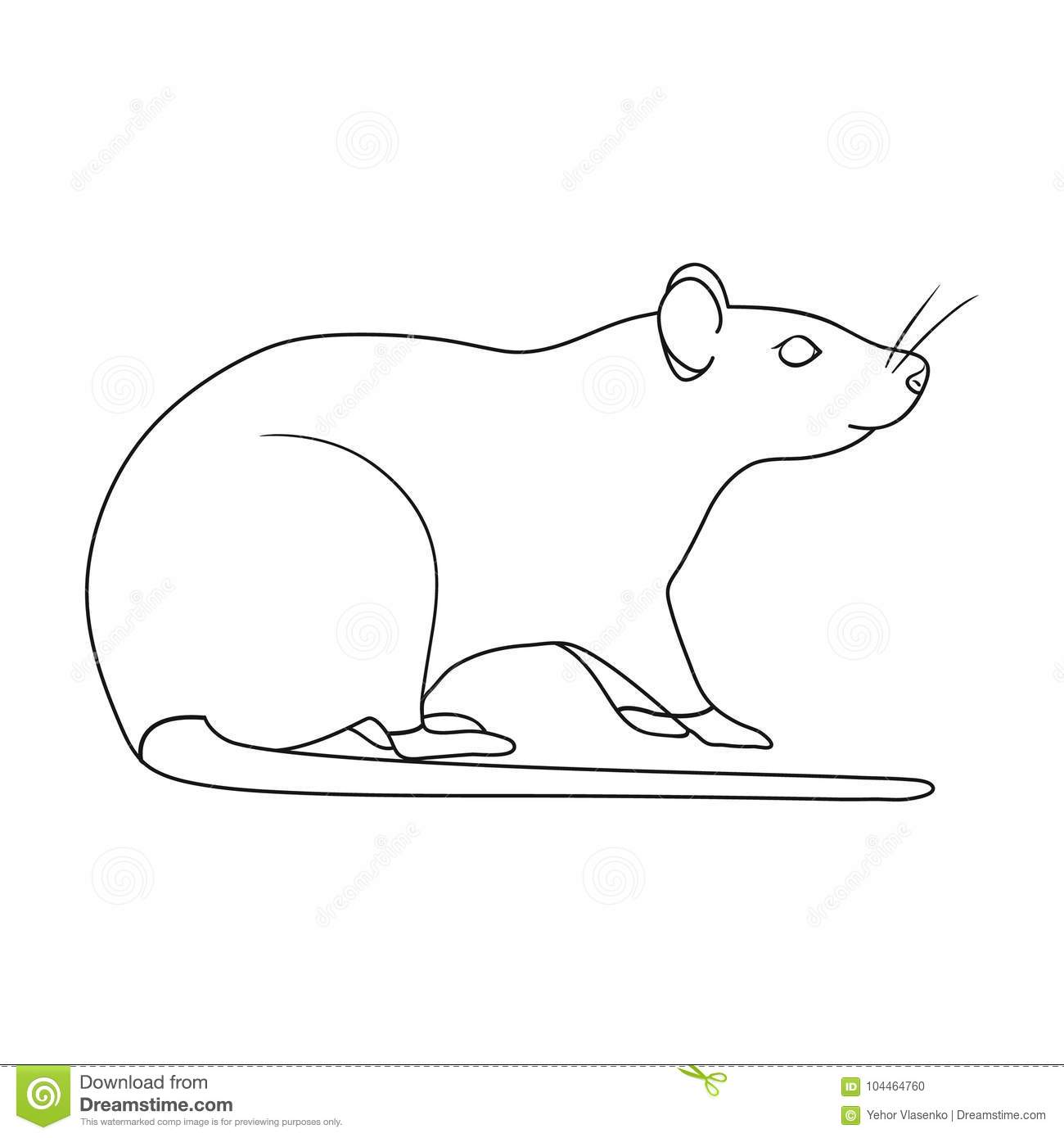 Rodent Rat Single Icon In Outline Style For Design Pest