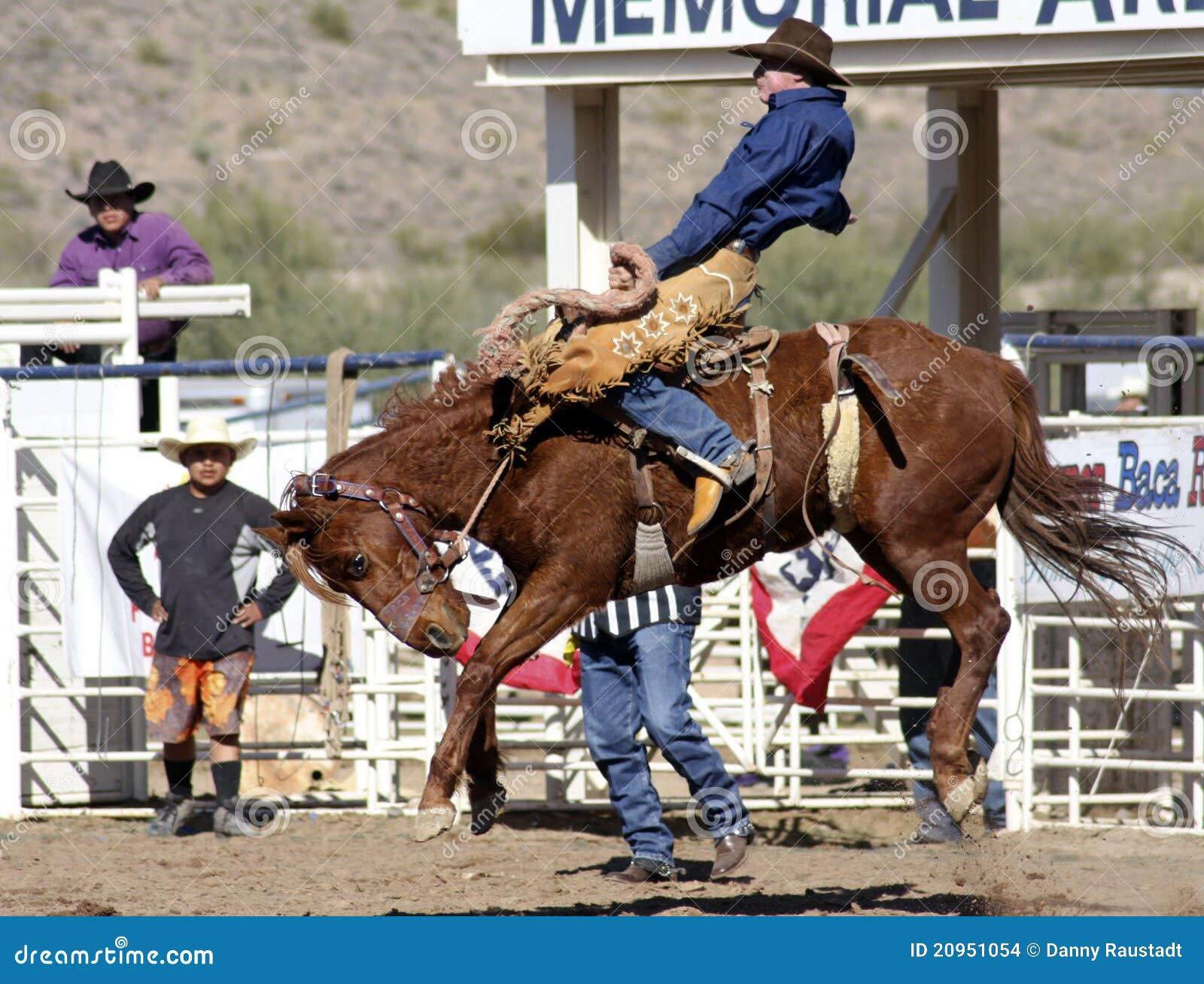 Rodeo Bucking Bronc Rider Editorial Stock Image Image