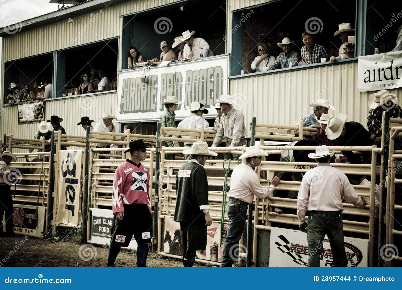 Rodeo i kowboje