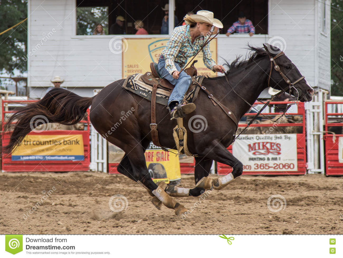 Rodeo Racer