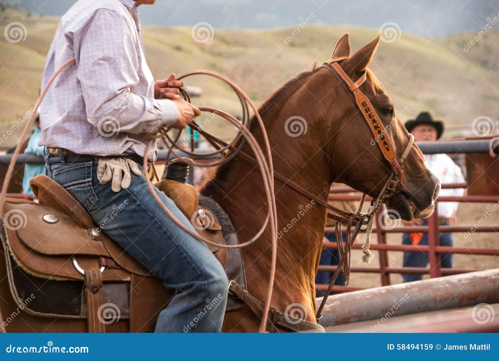 Rodeo Wrangler