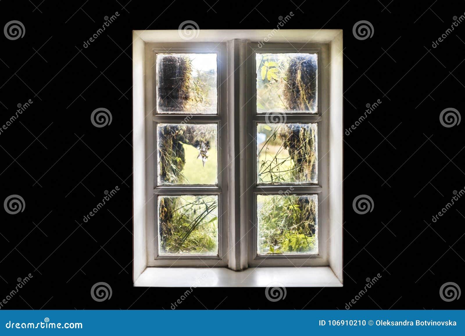 Rodzaj okno