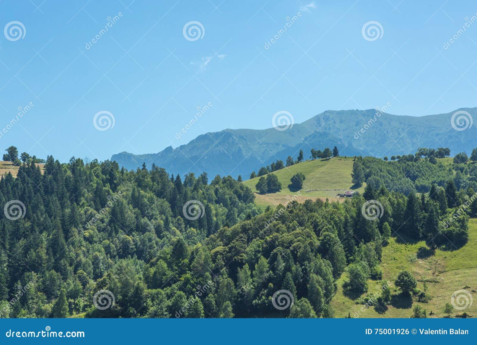 Roemeens de zomerlandschap