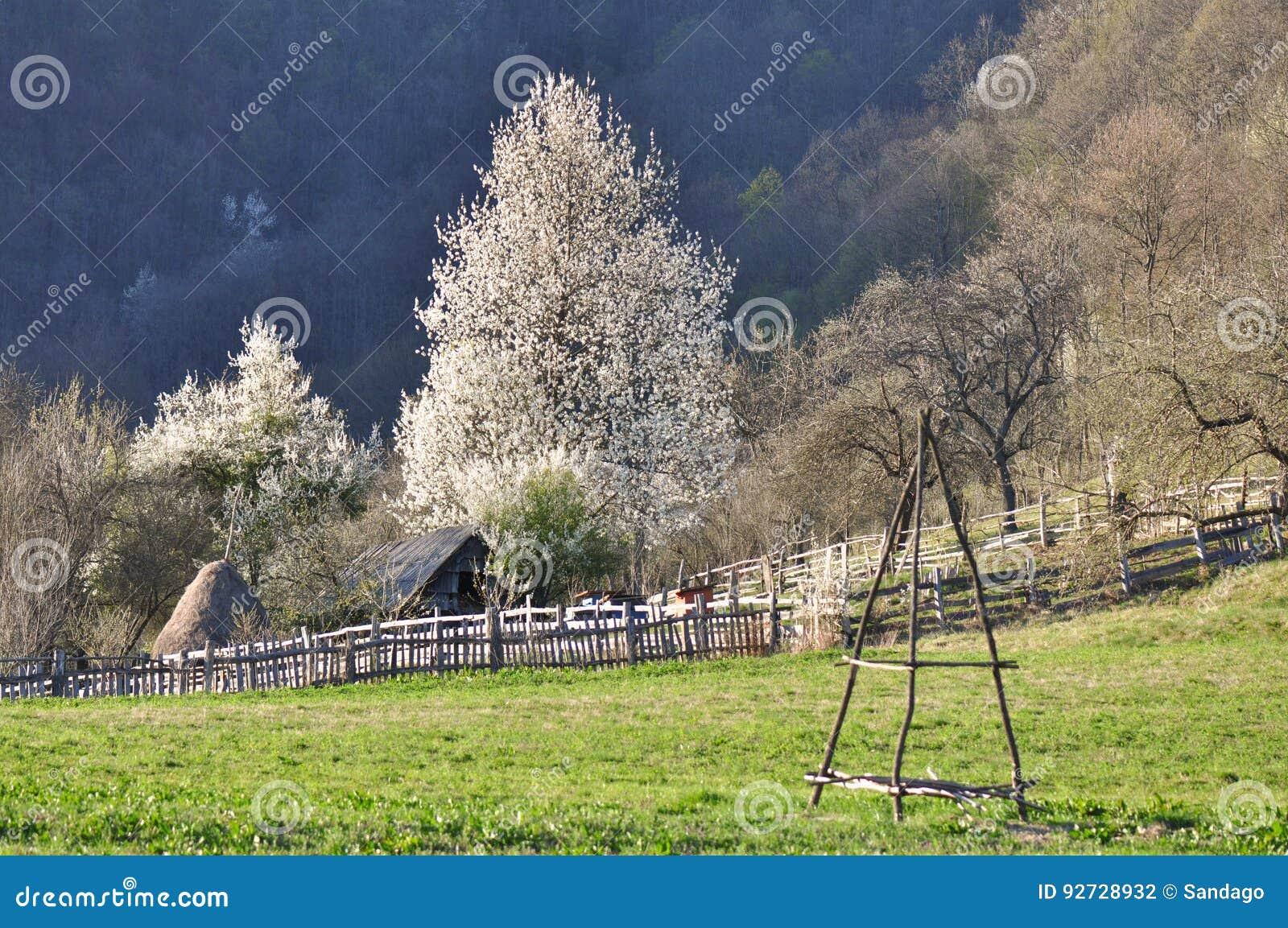 Roemeens landschap