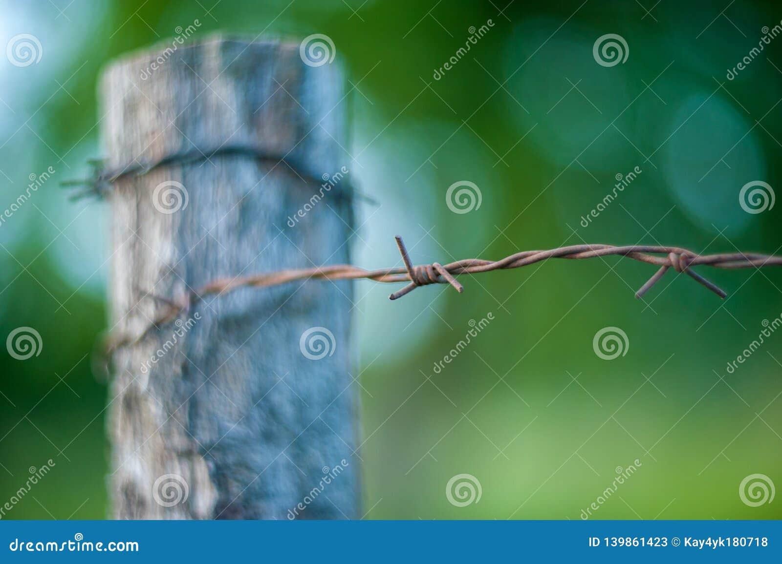 Roestige verwarde die draad aan een pijp wordt gebonden