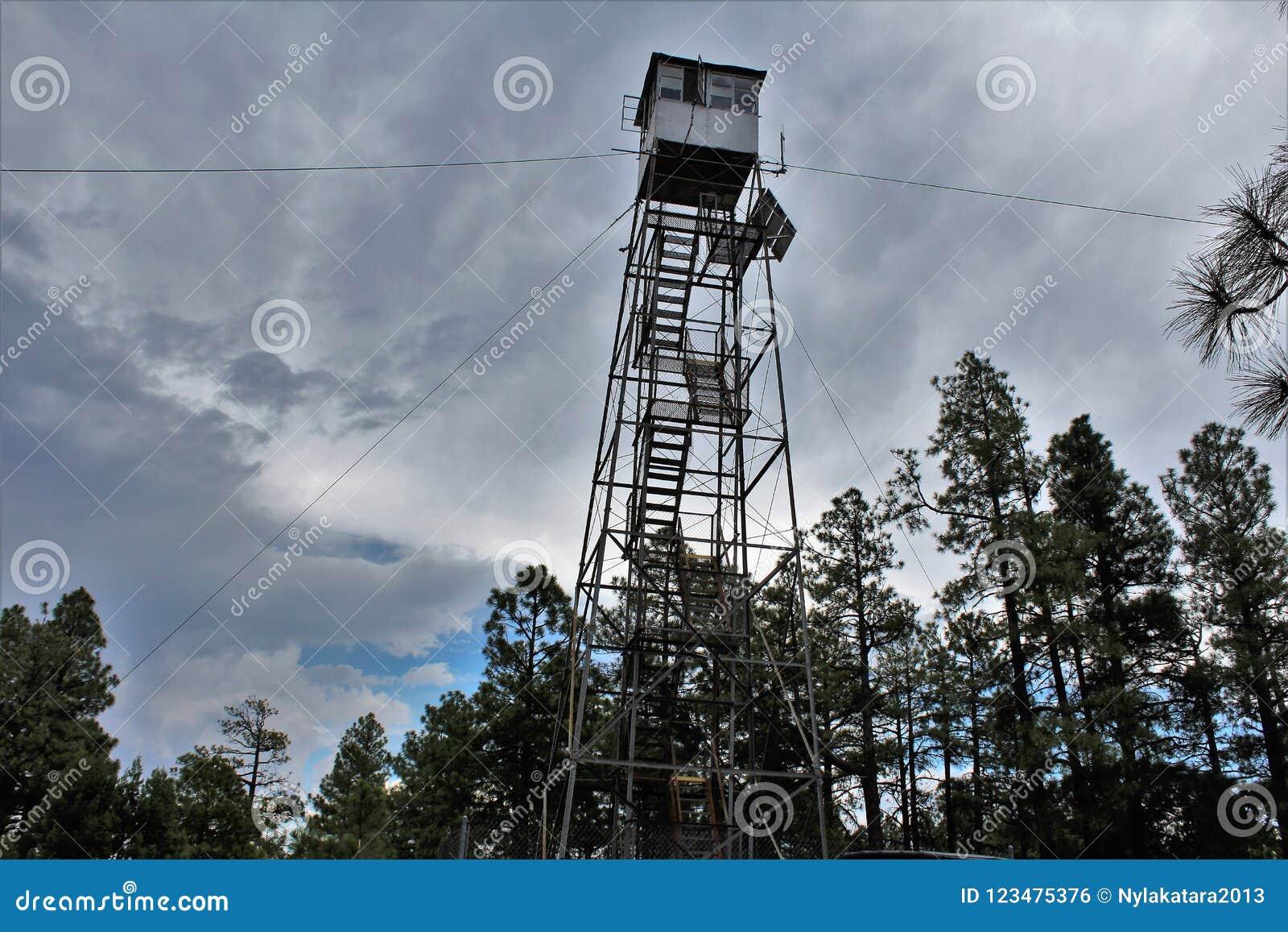 Rogacz Skacze światopogląd, Apache Sitgreaves las państwowy, Navajo okręg administracyjny, Arizona, Stany Zjednoczone