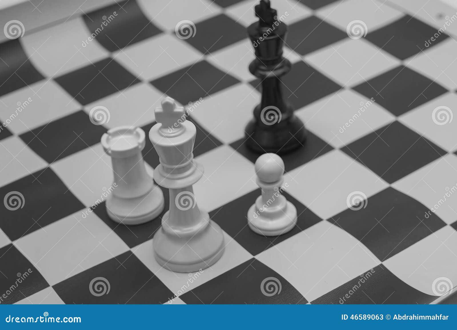 Roi blanc et noir contestant pour la victoire