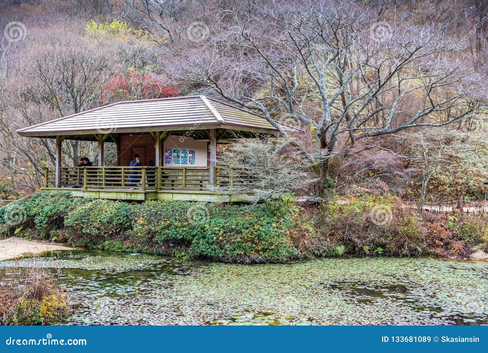 Rokko高山植物园在秋天