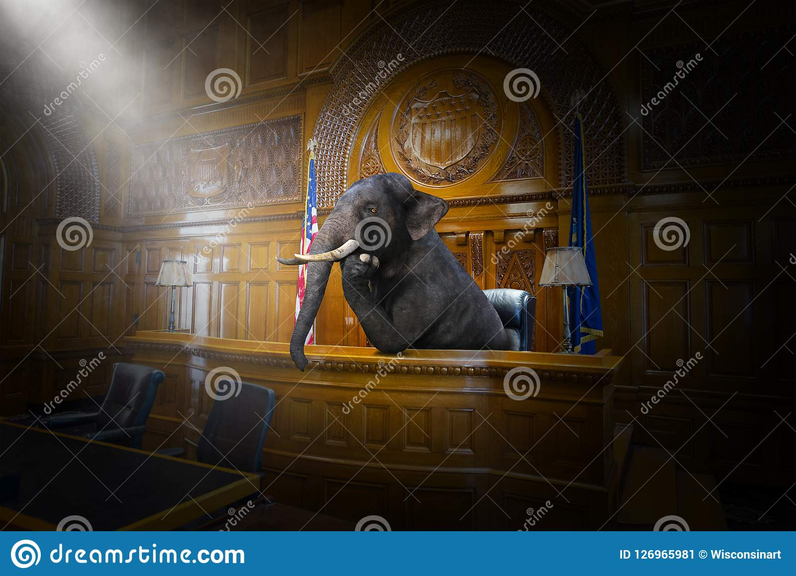 Rolig overklig elefantdomare, advokat, rättssal, lag