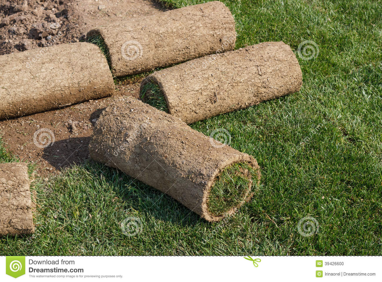 Landscaping Grass Roll : Roll grass stock photo image