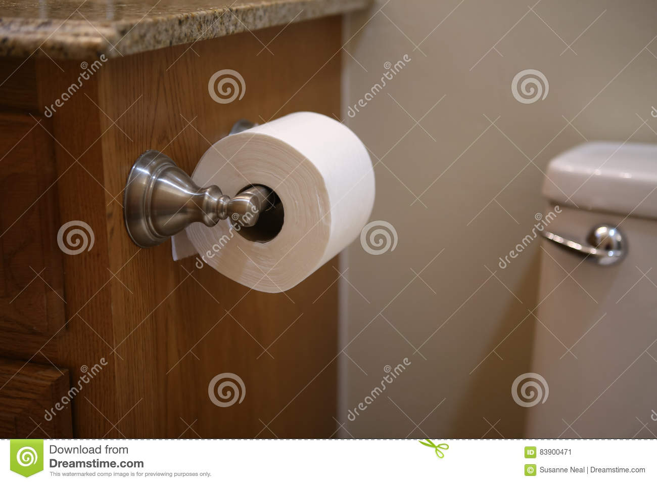 Roll Of Toilet Tissue Attached To A Vanity By A Toilet Stock Image