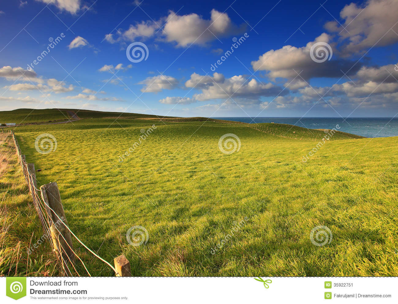 Nz Grasses For Landscaping Outdoor landscape in new zealand grass field und stock image outdoor landscape in new zealand grass field und stock image image of rolling bliss 35922751 workwithnaturefo