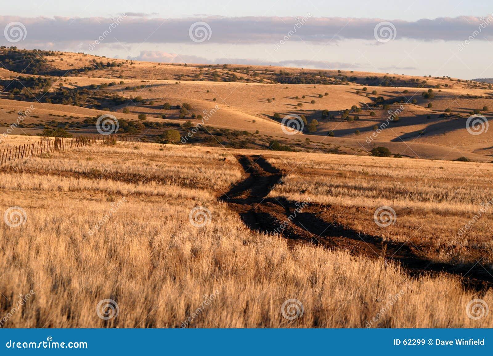 Rolling heuvels