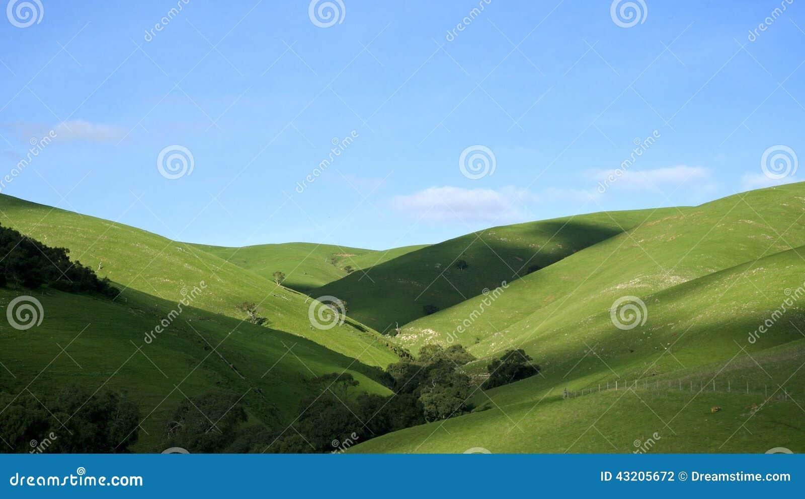 Download Rolling Hills arkivfoto. Bild av natur, green, australasian - 43205672