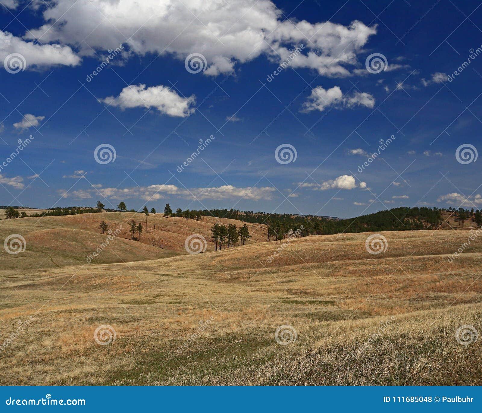 Rolling Hills av Custer State Park