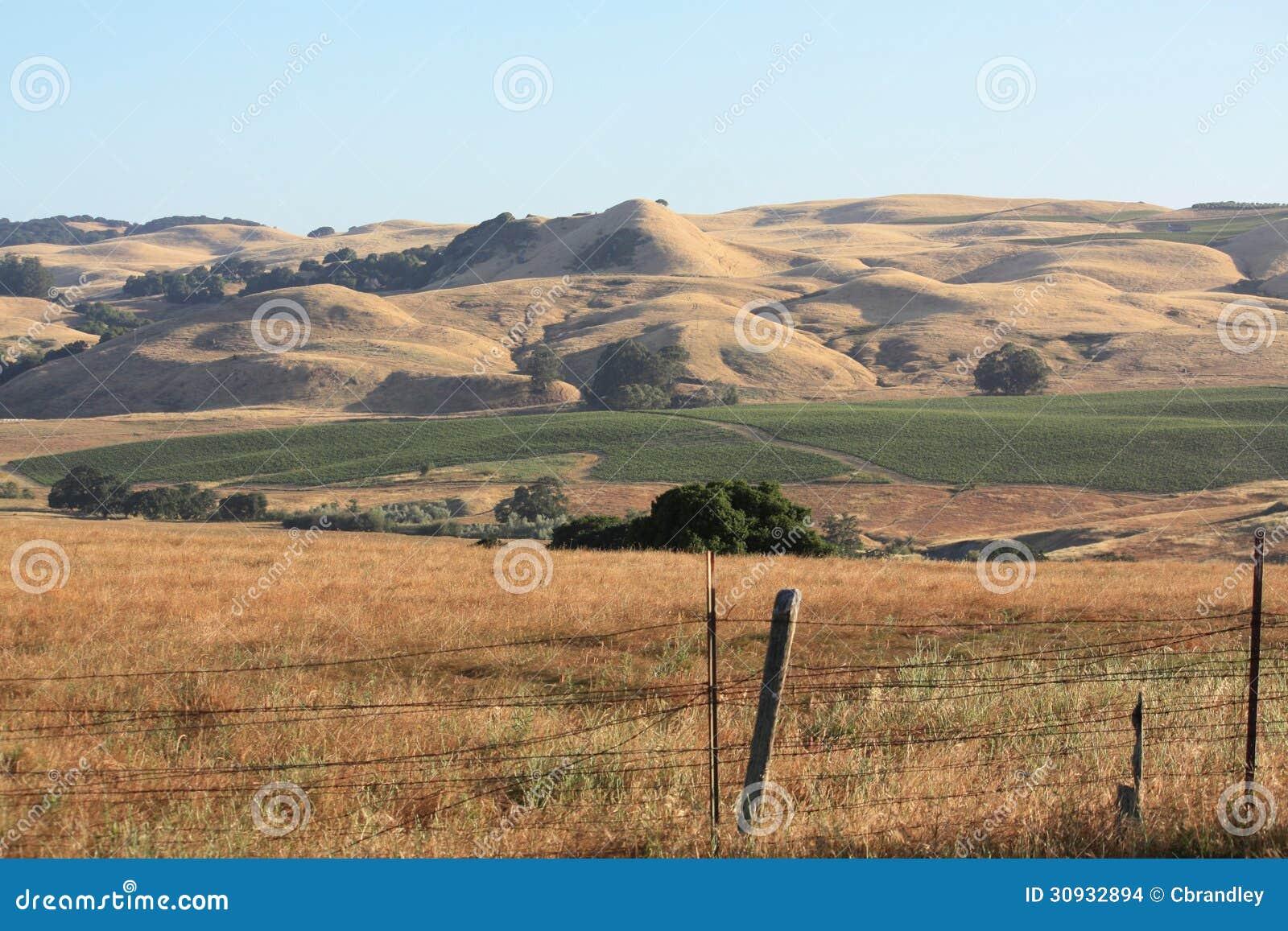 Rolling Hills et vieille barrière