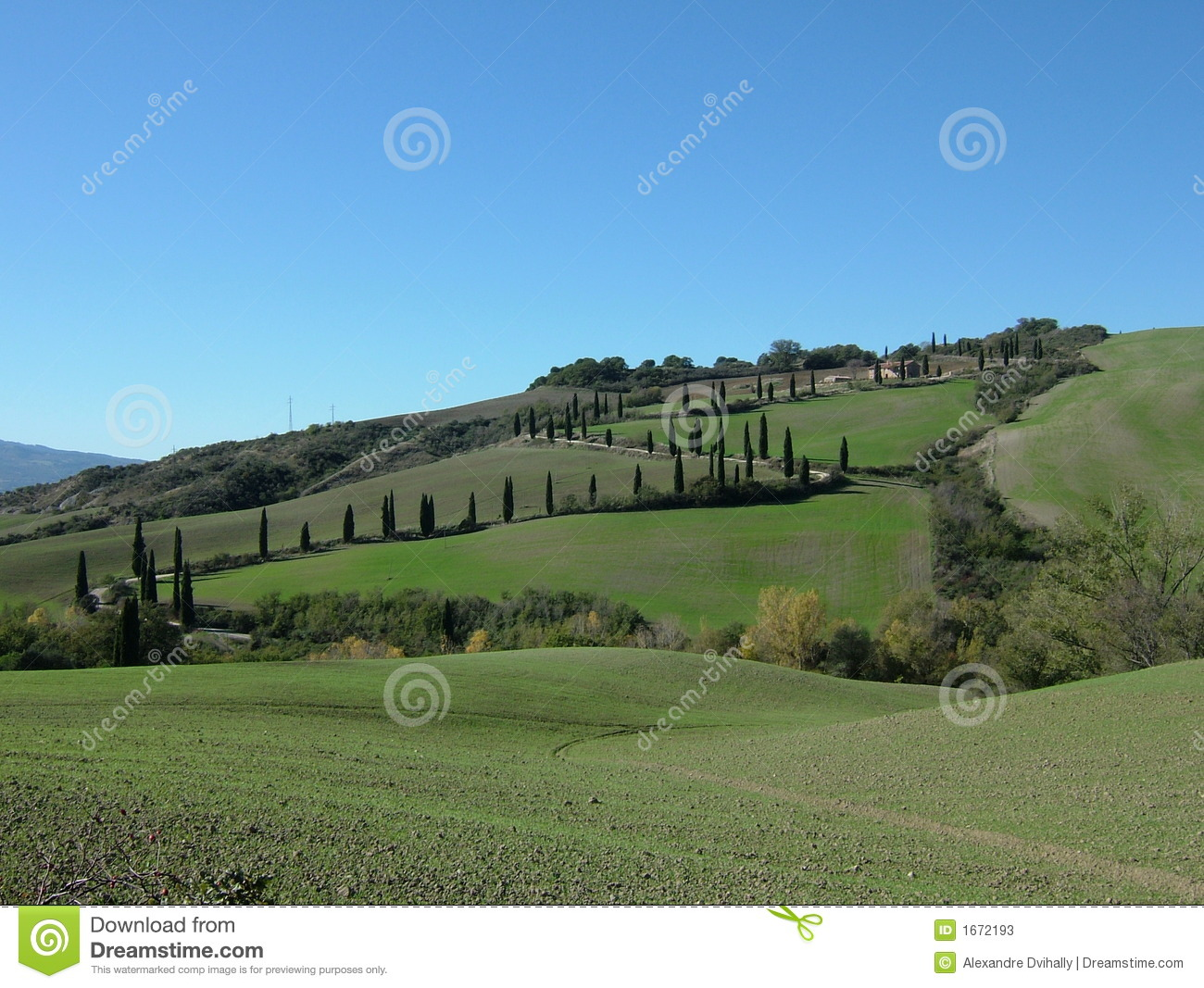 Rolling hills of tuscany italy stock photos image 1672193 for Green italy