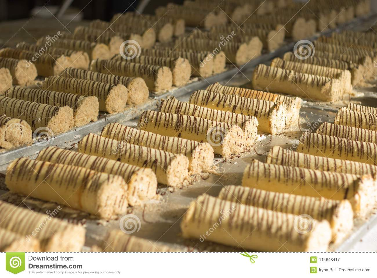 Rolls with chocolate glazings prepared for packaging in boxes