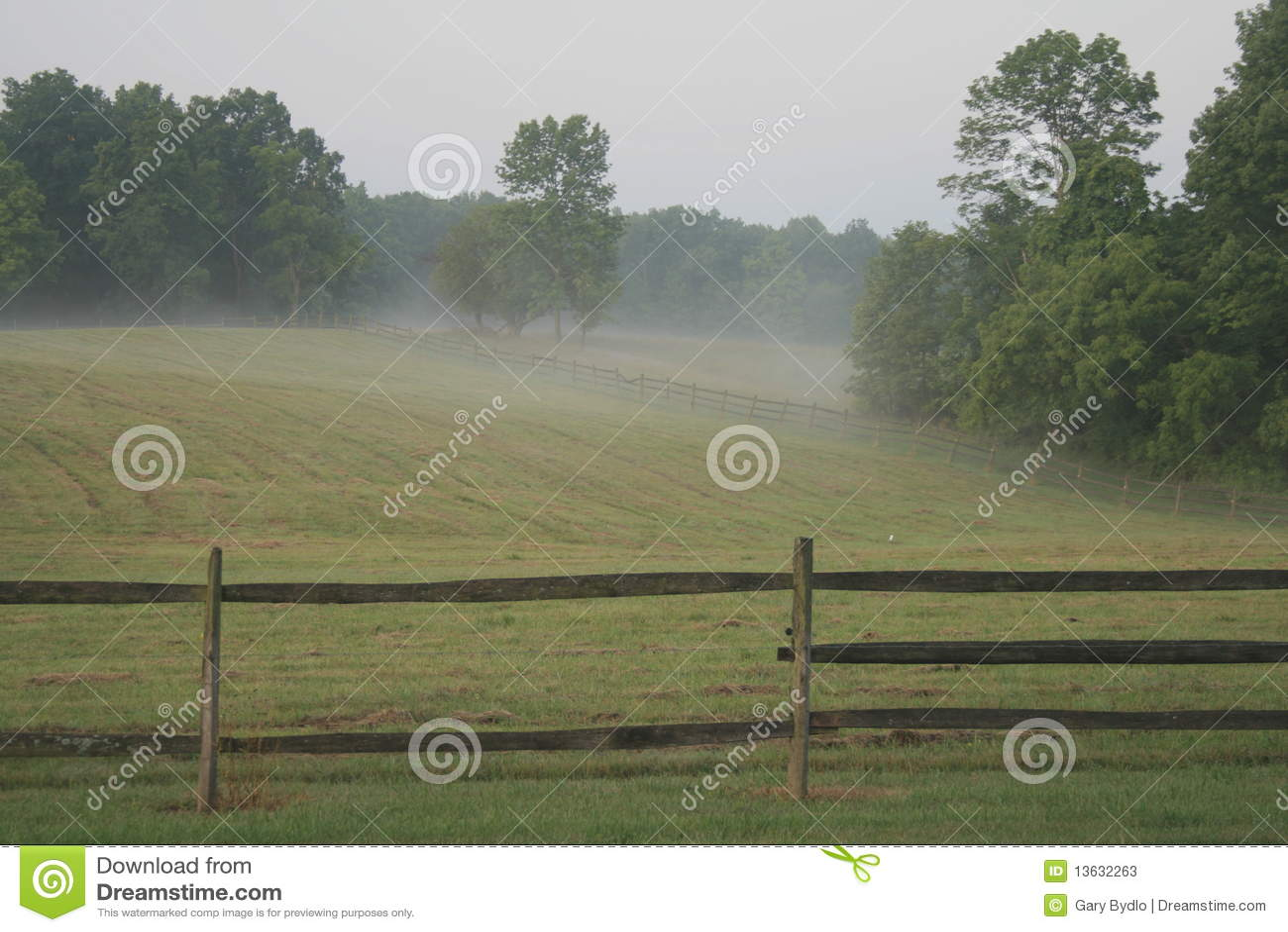 Rolna mgła
