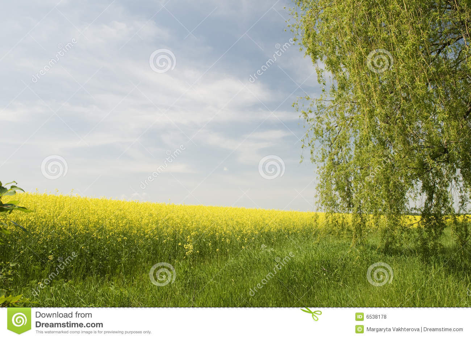 Rolnictwa krajobrazowy natury lato