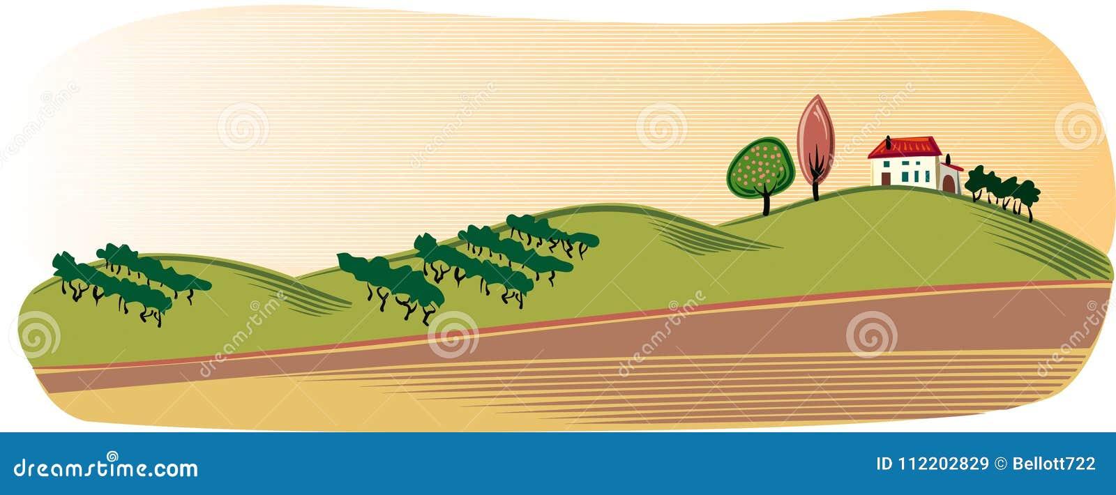 Rolniczy krajobraz z coltivate polami