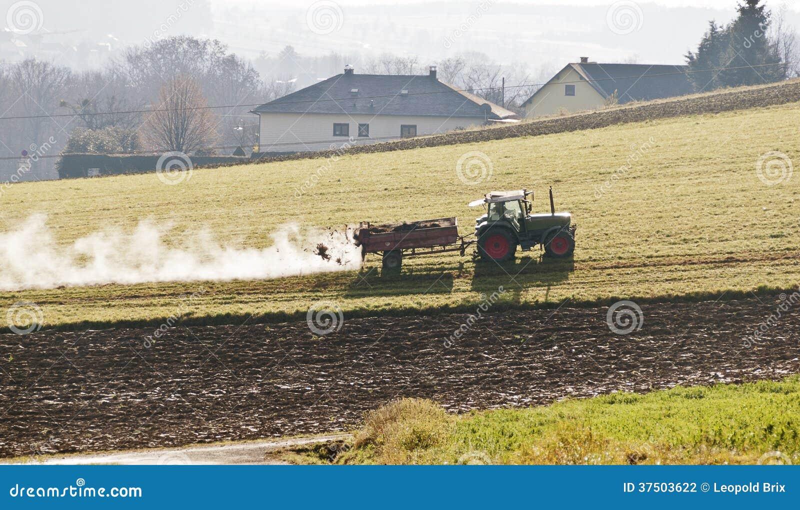 Rolnik nawozi łąkę z łajnem