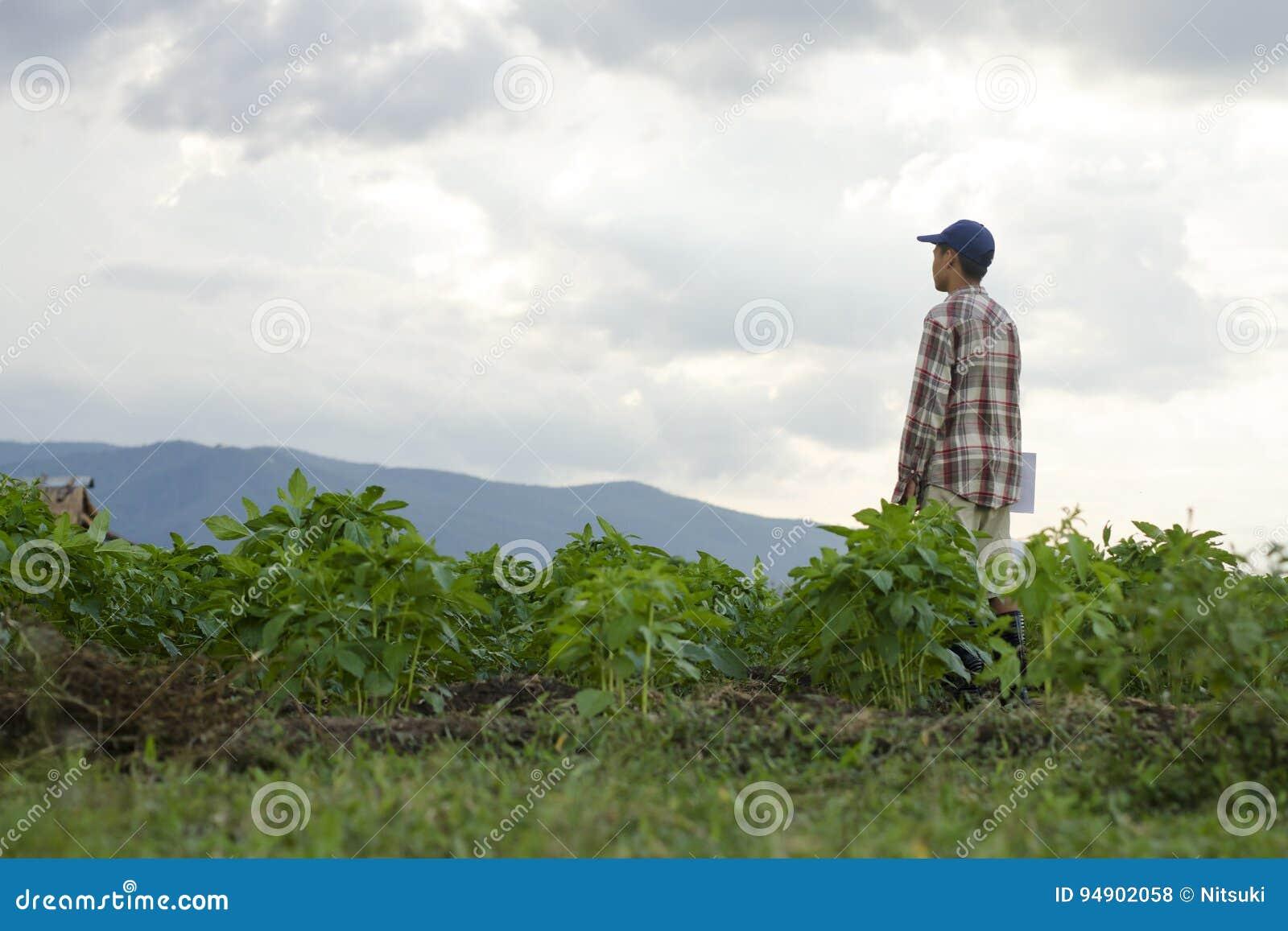 Rolnik w ziemi uprawnej