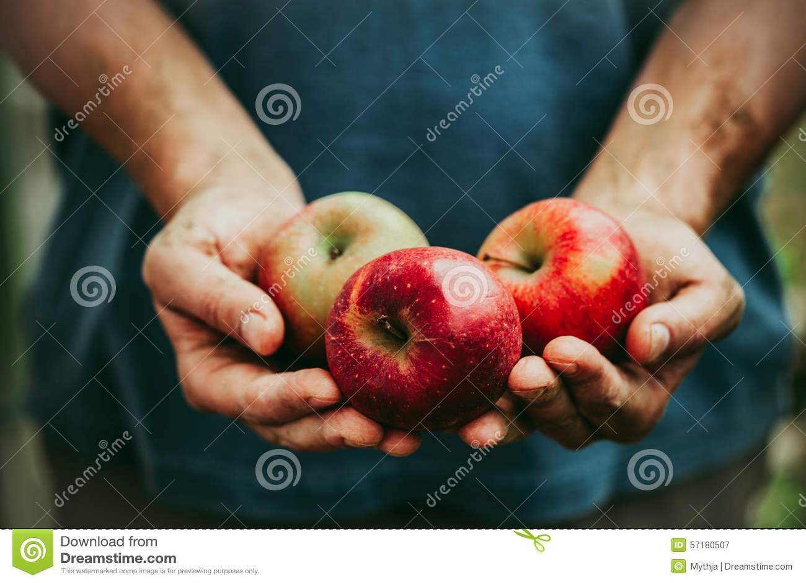 Rolnik z jabłkami